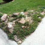 corner of yard with rocks