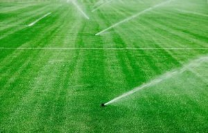Offering a full range of sprinkler services: startups, blowouts, installs, pump installations, and repairs.