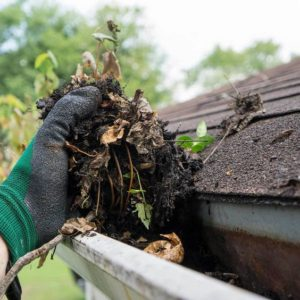 Gutter cleaning & debris removal is a pain - let us handle it.
