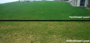 Lawn-Fertilizer-and-Weed-Control-Nitrogen-Fertilizer