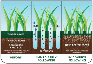 Lawn aeration allows air, water & nutrients to reach your lawn's roots.
